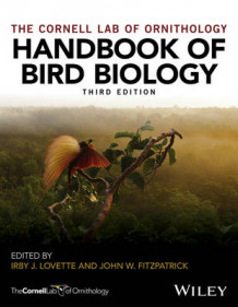 Handbook of Bird Biology av Cornell Lab of Ornithology (Innbundet)