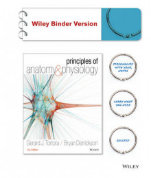 Principles of Anatomy and Physiology av Gerard J Tortora (Perm)