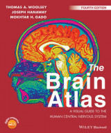 Omslag - The Brain Atlas