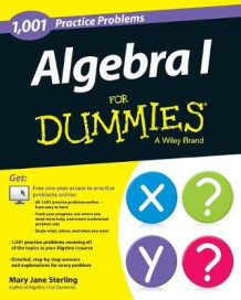 1001 Algebra I Practice Problems For Dummies av Mary Jane Sterling (Heftet)