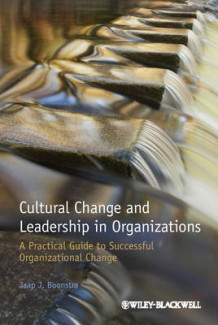 Cultural Change and Leadership in Organizations - a Practical Guide to Successful Organizational Change av Jaap J. Boonstra (Heftet)