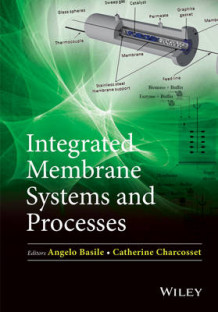 Integrated Membrane Systems and Processes av Angelo Basile og Catherine Charcosset (Innbundet)