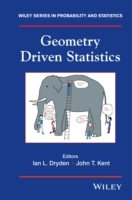 Geometry Driven Statistics (Innbundet)