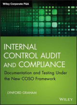 Omslag - Internal Control Audit and Compliance
