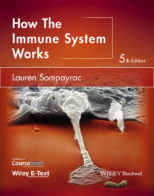 How the Immune System Works av Lauren M. Sompayrac (Heftet)