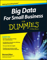 Omslag - Big Data for Small Business for Dummies