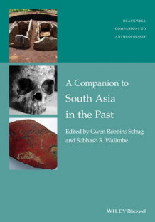 A Companion to South Asia in the Past av Gwen Robbins Schug og Subhash R. Walimbe (Innbundet)