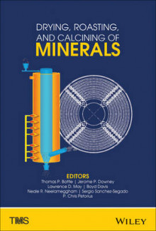 Drying, Roasting, and Calcining of Minerals av Thomas P. Battle, Jerome P. Downey, Lawrence D. May, Boyd R. Davis, Neale R. Neelameggham, Sergio Sanchez-Segado, P. Chris Pistorius og TMS (Innbundet)