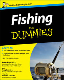 Fishing For Dummies av Peter Kaminsky, Greg Schwipps og Dominic Garnett (Heftet)