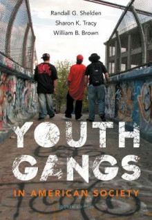 Youth Gangs in American Society av Sharon K. Tracy, William Brown og Randall G. Shelden (Heftet)