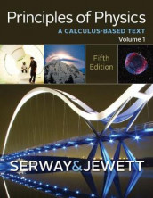 Principles of Physics av John Jewett og Raymond Serway (Innbundet)