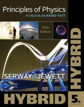 Principles of Physics av John W Jewett og Raymond A Serway (Heftet)