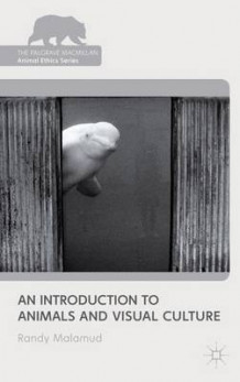 An Introduction to Animals and Visual Culture av Randy Malamud (Innbundet)