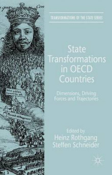 State Transformations in OECD Countries av Steffen Schneider (Innbundet)