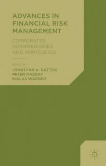 Advances in Financial Risk Management av Jonathan A. Batten og Peter Mackay (Innbundet)