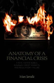 Anatomy of a Financial Crisis av Marc Jarsulic (Heftet)