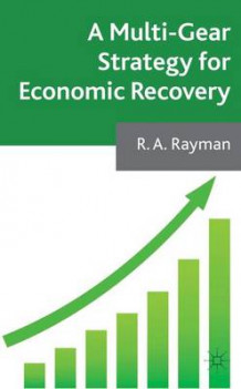 A Multi-Gear Strategy for Economic Recovery av Robert Rayman (Innbundet)