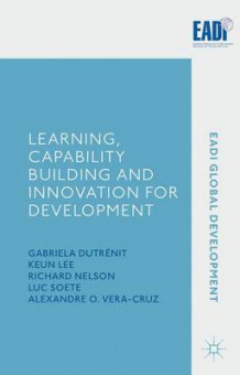 Learning, Capability Building and Innovation for Development (Innbundet)