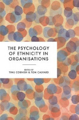 Omslag - The Psychology of Ethnicity in Organisations