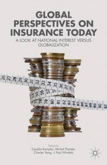 Global Perspectives on Insurance Today (Heftet)