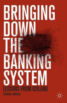 Bringing Down the Banking System av Gudrun Johnsen (Innbundet)
