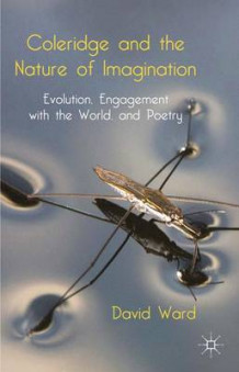Coleridge and the Nature of Imagination av David Ward (Innbundet)