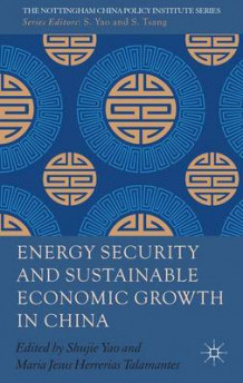 Energy Security and Sustainable Economic Growth in China (Innbundet)