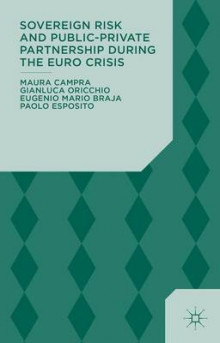 Sovereign Risk and Public-Private Partnership During the Euro Crisis av Maura Campra, Gianluca Oricchio, Eugenio Mario Braja og Paolo Esposito (Innbundet)