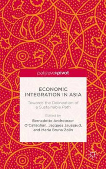 Economic Integration in Asia (Innbundet)