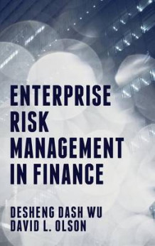 Enterprise Risk Management in Finance av David L. Olson og Desheng Dash Wu (Innbundet)