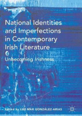 Omslag - National Identities and Imperfections in Contemporary Irish Literature 2017