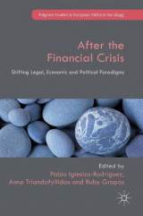 Omslag - After the Financial Crisis