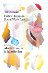Omslag - Critical Issues in Social Work Law