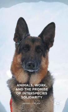 Animals, Work, and the Promise of Interspecies Solidarity 2015 av Kendra Coulter (Innbundet)