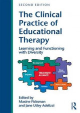 Omslag - The Clinical Practice of Educational Therapy