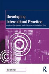 Omslag - Developing Intercultural Practice