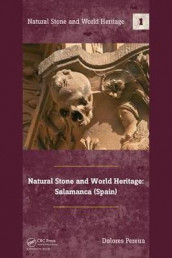Natural Stone and World Heritage: Salamanca (Spain) av Dolores Pereira (Innbundet)