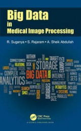 Omslag - Big Data in Medical Image Processing