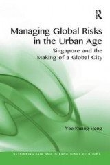 Omslag - Managing Global Risks in the Urban Age