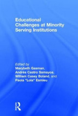 Omslag - Educational Challenges at Minority Serving Institutions