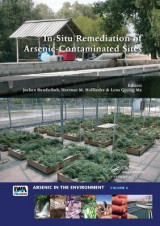 Omslag - In-Situ Remediation of Arsenic-Contaminated Sites