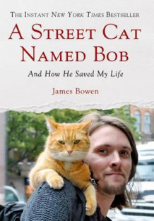 A Street Cat Named Bob av James Bowen (Innbundet)