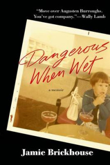 Dangerous When Wet av Jamie Brickhouse (Innbundet)
