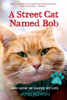 A Street Cat Named Bob and How He Saved My Life av James Bowen (Heftet)