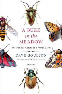 A Buzz in the Meadow av Senior Lecturer Division of Biodiversity and Ecology at School of Biological Sciences Dave Goulson (Innbundet)