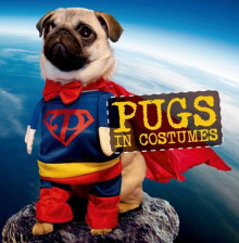Pugs in Costumes av Virginia Woof (Innbundet)