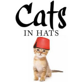 Omslag - Cats in Hats