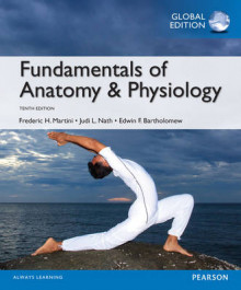 Fundamentals of Anatomy & Physiology, Global Edition av Frederic H. Martini, Judi L. Nath og Edwin F. Bartholomew (Heftet)