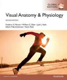 Visual Anatomy & Physiology, Global Edition av Frederic H. Martini, William C. Ober og Judi L. Nath (Heftet)