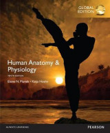 Omslag - Human Anatomy & Physiology, Global Edition